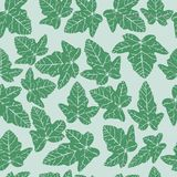 Seamless ivy Royalty Free Stock Photography