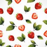 seamless jordgubbe för bakgrund Royaltyfri Fotografi