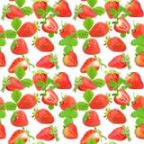 seamless jordgubbe för modell Arkivfoton