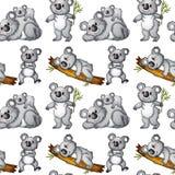 Seamless koala Stock Image