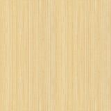 Seamless lönn (wood textur) Royaltyfria Foton