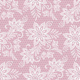 Seamless lace floral pattern. Flowers on pink background vector illustration Royalty Free Stock Photography