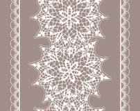 Seamless lace pattern Stock Image