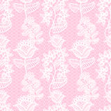 Seamless lace pattern. Pink gentle seamless floral lacy pattern, vintage background Royalty Free Stock Photography