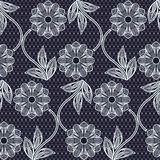 Seamless lace pattern. Stock Images