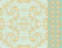 Seamless laced paisley  pattern with border Stock Images