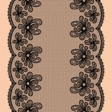 Seamless lacy stripe Stock Images