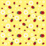 Seamless ladybug pattern Stock Photo