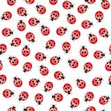 Seamless ladybug pattern Royalty Free Stock Photography