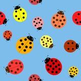 Seamless the ladybugs. Royalty Free Stock Photos