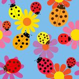Seamless ladybugs and flowers. Stock Photography