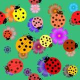Seamless ladybugs and flowers. Royalty Free Stock Image