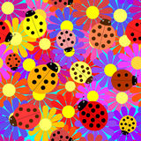 Seamless ladybugs and flowers. Stock Images