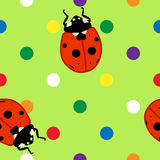 Seamless ladybugs over green background. Seamless pattern of cute ladybugs over fun colorful polka dots and green background Royalty Free Stock Image