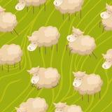 Seamless lamb background Stock Image