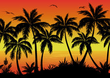 Seamless Landscape, Palms, Ocean and Birds. Exotic Horizontal Seamless Landscape, Palm Trees, Plants, Ocean and Birds Gulls Black Silhouettes. Eps10, Contains stock illustration