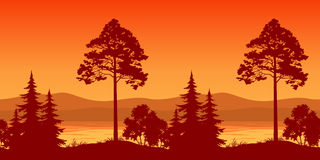 Seamless Landscape, Trees on Bank of Mountain Lake. Seamless Horizontal Landscape, Pine Trees and Bushes on the Bank of a Mountain Lake, Silhouettes. Vector Royalty Free Stock Photography