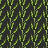 Seamless Laurel Branch Background. Cute Repeating wheat Vector Background. Wheat Background. Stock Photography