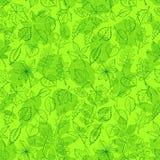 Leaves of Plants Pictogram, Seamless. Seamless Leaf Contour Silhouette Dogrose, Oak, Iberian Oak, Maple, Liquidambar, Hawthorn, Poplar Silver, Hazel, Elm, Birch Stock Images