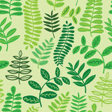 Seamless leaf forest fern pattern background. Vector Royalty Free Stock Photos