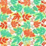 Seamless leaf pattern.Leaf background. Autumn seamless pattern. Royalty Free Stock Photos