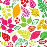 Seamless leaf pattern.Leaf background. Autumn seamless pattern. Royalty Free Stock Image