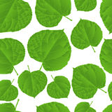 seamless leafmodell Royaltyfri Foto