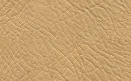 Seamless leather texture royalty free stock image
