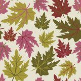 Seamless  with leaves Stock Photos