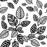 Seamless leaves background. Black and white doodling elements stock illustration