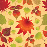 Seamless leaves background. Thanksgiving. Seamless  autumn leaves background. Thanksgiving (from my big Seamless collection Royalty Free Stock Images