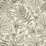 Seamless  leaves background. Thanksgiving Stock Image