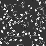 Seamless leaves monochrome pattern Stock Images