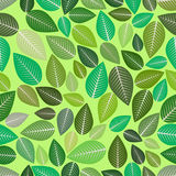 Seamless Leaves Nature Decoration Pattern Stock Photos