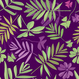 Seamless leaves pattern, background from leaves. Of potted flowering plants, flat illustration Royalty Free Stock Photography