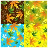 Seamless leaves Stock Photos