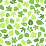 Seamless leaves pattern Stock Photo