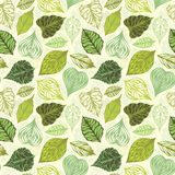 Seamless leaves pattern. Set of various ornate leaves on light background Stock Image
