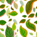 Seamless Leaves Tile Royalty Free Stock Images