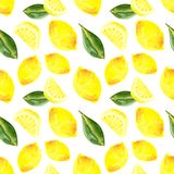 Watercolor Seamless pattern with lemon and leaves vector illustration