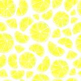 Seamless citrus pattern stock illustration