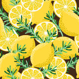 Seamless lemon and rosemary Stock Image