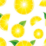Seamless lemon slices Stock Photos
