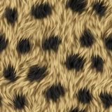 Seamless Leopard Animal Fur Background Stock Photos