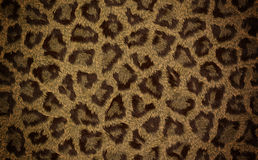 Seamless leopard animal fur texture for background Stock Photo