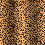 Seamless leopard background Royalty Free Stock Images