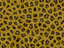Seamless leopard fur Royalty Free Stock Photography