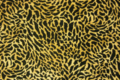 Seamless leopard fur pattern. Used as raw material for screen and print pattern Royalty Free Stock Photography