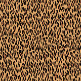 Seamless leopard pattern. Animal skin texture. Royalty Free Stock Photo