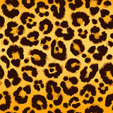 Seamless leopard pattern. Vector. Royalty Free Stock Photography